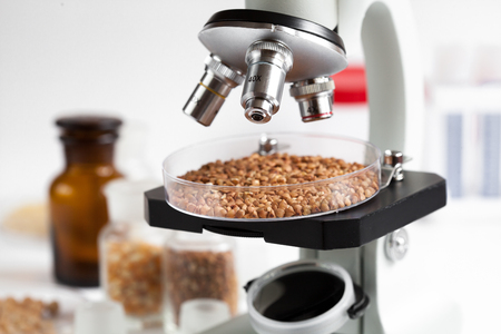 food inspection: concept healthy food inspection in laboratory no one close up Stock Photo