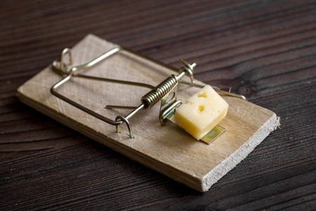 mousetrap: concept food for rodents in mousetrap on wooden background top view