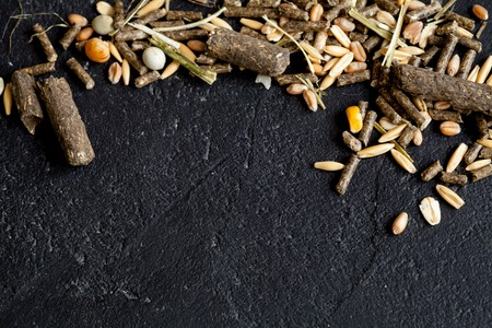 rodents: dry food for rodents on dark background top view.
