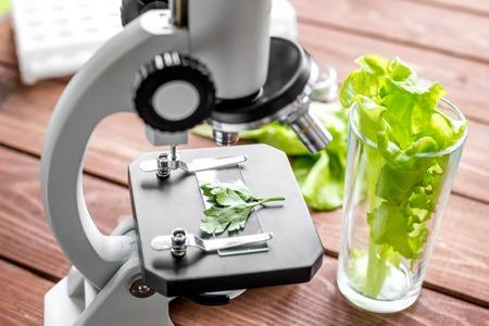 concepto de inspección de alimentos saludables hierbas en laboratorio