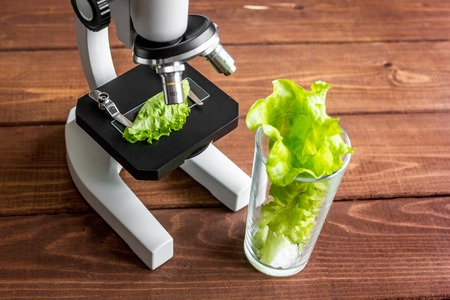 concept healthy food inspection herbs in laboratory close up Archivio Fotografico