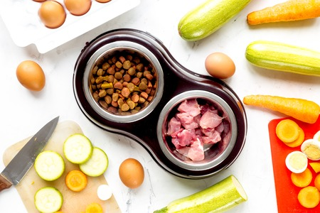 cat carrier: petfood set with fresh vegetables and cut meat on white kitchen table background top view