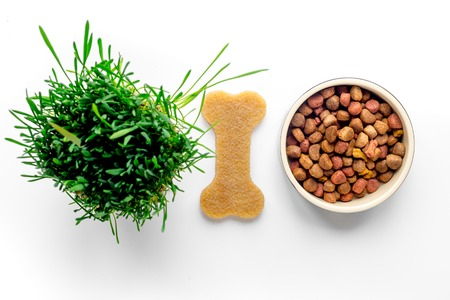 dry dog food in bowl on white background top view
