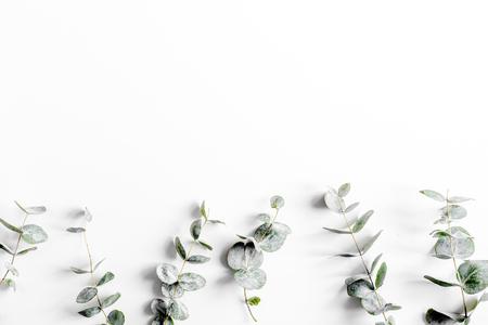 Modern spring design with plants on white background top view mock-up Standard-Bild