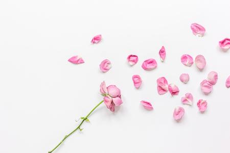 spring floral design with rose petals in soft light top view mock-up Foto de archivo