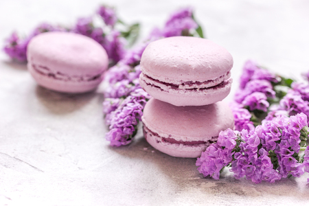 mauve: Trendy woman pattern with spring flowers and macaroons on plate