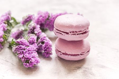 spring design in pastel color with macaroons and purple flowers