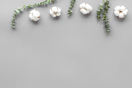 Flowers border with green eucalyptus branches and cotton on grey background top view copy space. Blog header mockup 版權商用圖片