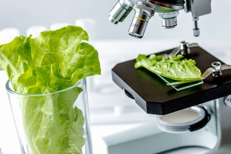 Concept - check dietary supplements in laboratory on microscope no one Stock Photo - 124951913