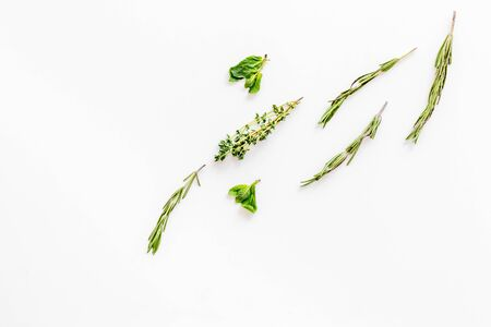 Homeopathy with leaves and healing herbs on white background top view copyspace