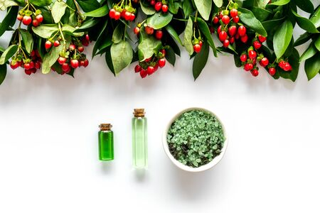 organic cosmetic with herbs and berries on white background top view Imagens