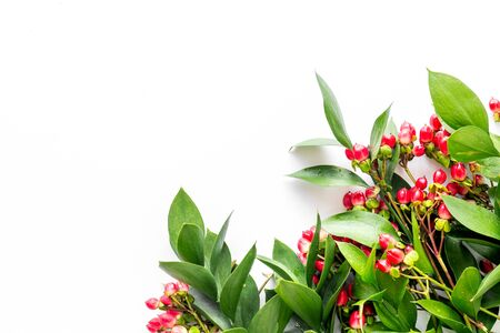 green herbs and red berries for summer design on white background top view mock up Imagens