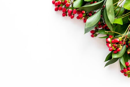 Background for blog with green plant and berries frame on white background top view space for text Imagens