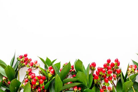 Background for blog with green plant and berries frame on white background top view space for text Stock fotó