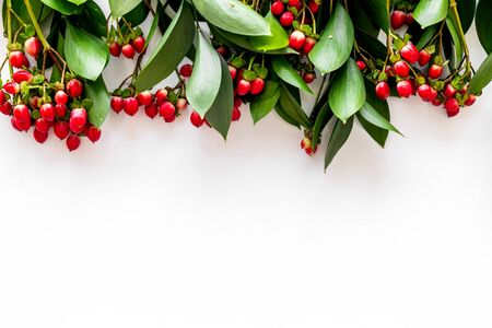 Green leaves and red berries frame on white background top view copyspace