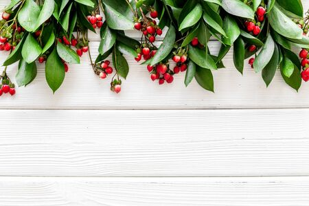 Background for blog with green plant and berries frame on white wooden background top view space for text