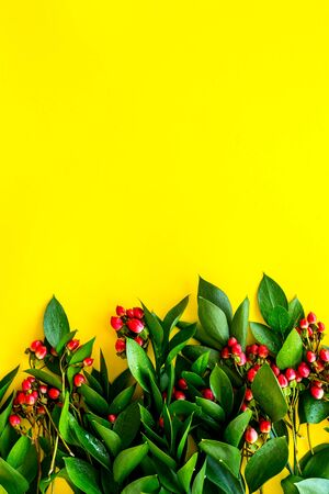 Background for blog with green plant and berries frame on yellow background top view space for text
