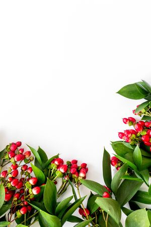 green herbs and red berries for summer design on white background top view mock up Stock fotó