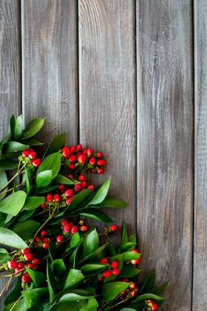 Green leaves and red berries frame on wooden background top view copyspace