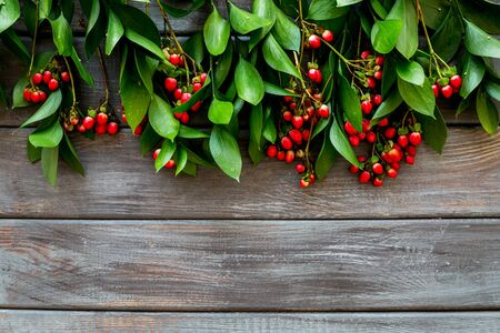 Background for blog with green plant and berries frame on wooden background top view space for text Stock fotó