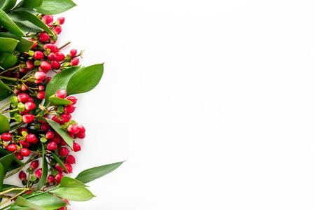 Summer pattern with green plants and red berries on white background top view mockup Stock fotó