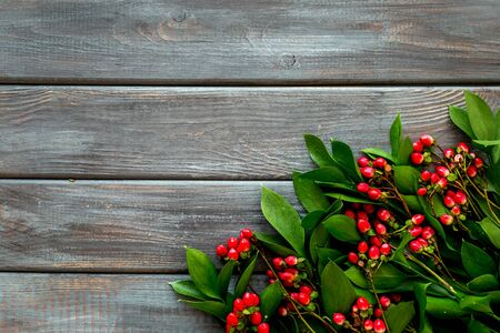 Background for blog with green plant and berries frame on wooden background top view space for text