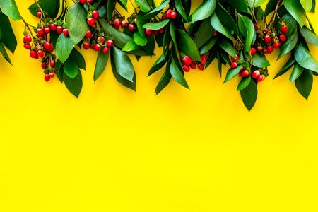green herbs and red berries for summer design on yellow background top view mock up