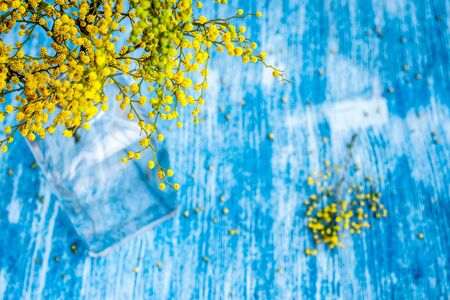 mimosa in glass vase on table top view mock up Stock Photo