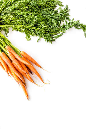 Carrot - fresh, with leaves - on white background top view.