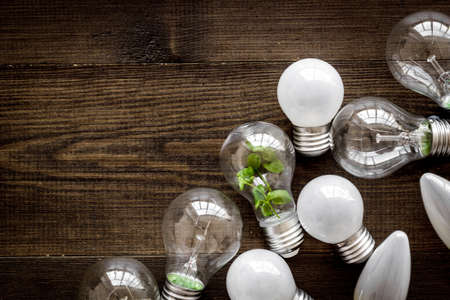 Light bulb with green grass - renewable energy eco concept Archivio Fotografico