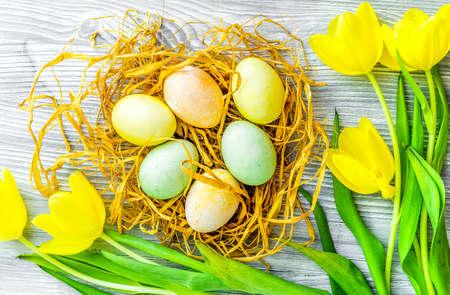 Easter concept eggs in nest top view close up Reklamní fotografie