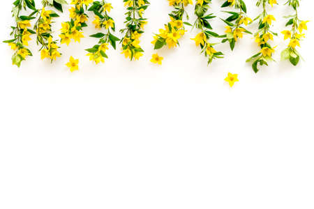 Floral pattern of yellow flowers with leaves, top view