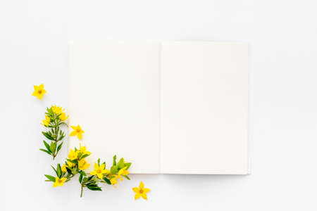 Spring card mockup with yellow flowers with leaves, top view
