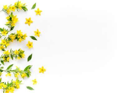 Flowers pattern. Flat lay of yellow flowers with leaves, top view Stock fotó