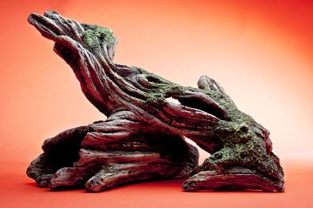 Driftwood against red background
