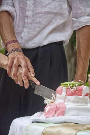 Bride & Groom cutting the cake 免版税图像