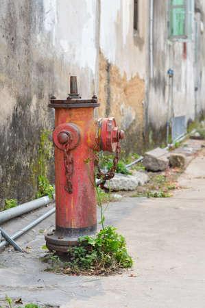 Mottled fire hydrants