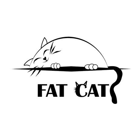 Fat cat Lazy fat cat sleep on a shelf