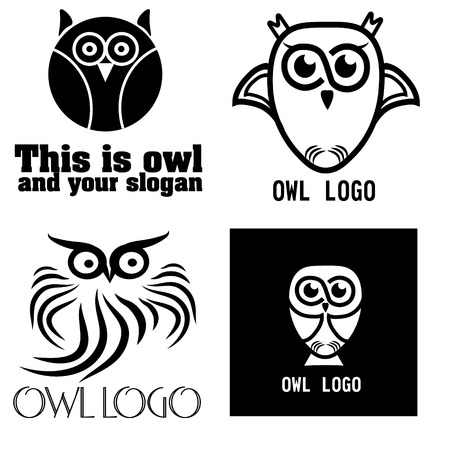 four eyes: illustration of a set of black and white owl