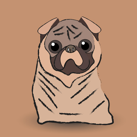 Mops little dog Vector illustration of a pug dog with bulging eyes who sits and looks at a host in pastel colors Illustration