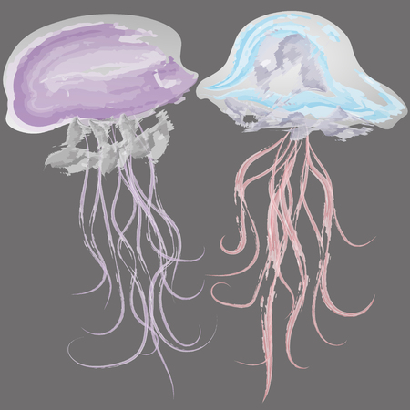 animalitos tiernos: Vector illustration of two watercolor jellyfish Image of two delicate watercolor jellyfish on a black background for decoration and design