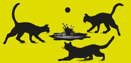 handiwork: Three cat and a pool with a ball On an abstract composition design handiwork game animal water a pool splashing style mammal beast