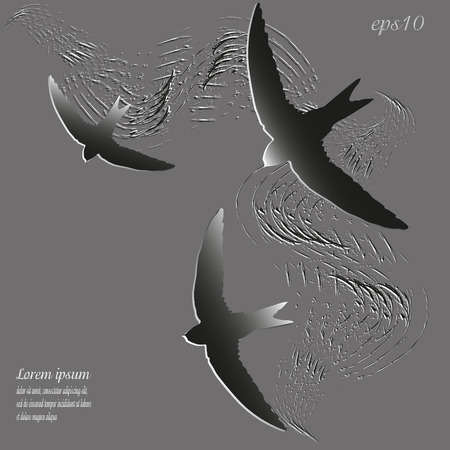 image size: Silhouette picture three swifts Abstract design author bird wings flying style paper gray object strokes of paint sign text logo brochure background eps10 vector illustration Stock