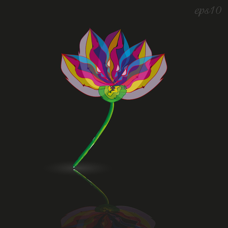 One Flower Style Modern Abstraction plant on black multicolored petals reflected in the bottom picture of a stalk without a leaf similar to a stained glass image