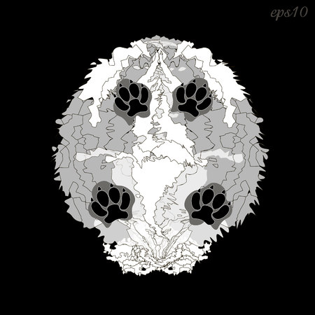 Shaggy white dog Abstract composition on black background style pop art trunk fluffy animal four black paws