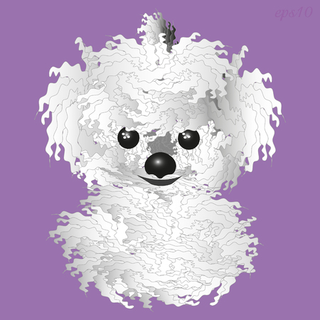 White fluffy dog ??Shaggy animal kind animal with black eyes and nose, two fluffy ear vector illustration
