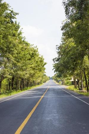 mori: Road connectivity between cities