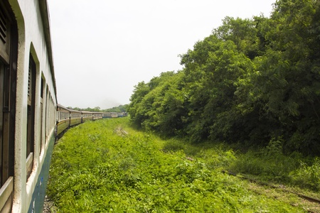 forest railroad: Railroad through the mountains with Forest Stock Photo
