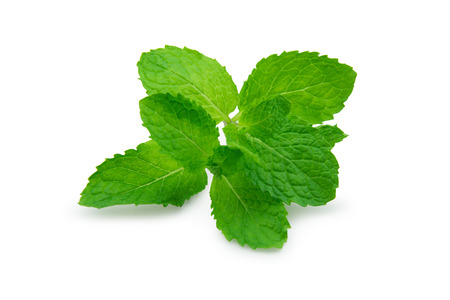 Peppermint isolated with shadow on white background