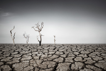 Drought land Stockfoto